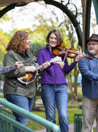 Live bluegrass music in Collierville