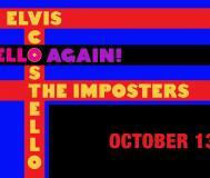 Elvis Costello Graceland Live