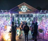 Botanic Garden Holiday / Logan Young